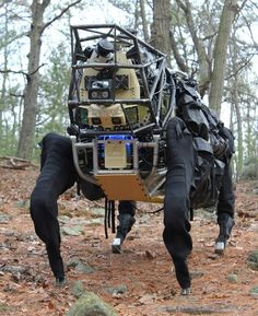 Le robot Alpha Dog de Boston Dynamics