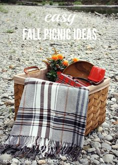 Easy Fall Picnic Ideas - Tips and Tricks from designdininganddiapers.com: