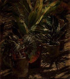 Begonias, circa 1880, Aleksander Gierymski