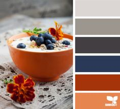 Living room color scheme. Grey couch navy and orange accents