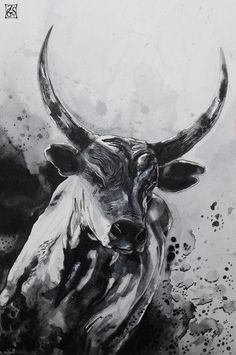 Ox Tattoo, Taurus Bull Tattoos, Taurus Art, Logo Image, Geniale Tattoos, Dragon Tattoo Designs, Animal Sketches, Ink Illustrations, Wildlife Art