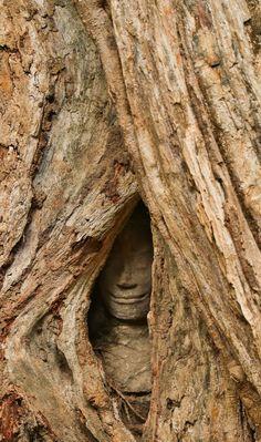 カンボジア遺跡にいったら、ガチでダンジョンRpgでヤバイ