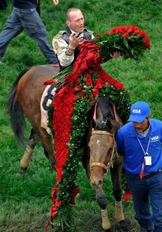 Kentucky Derby Winner 2009 Mind that Bird