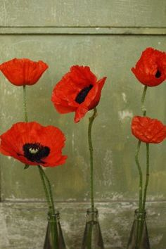 On the wall in her house were some drawings done by her. She had a few that had red poppies done in water colour.