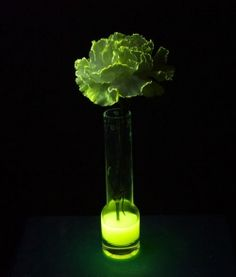 You can make a real flower glow in the dark! There is more than one way to make glowing flowers. The method you choose will depend on the color.