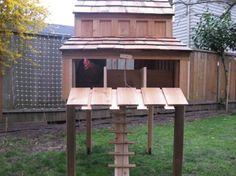 High rise chicken coop