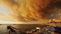 Authorities in Chile have declared a state of emergency after a raging forest fire forced thousands of people to flee their homes. Description from informationng.com. I searched for this on bing.com/images