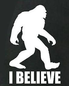 Big foot decal I believe Vinyl Decal Sticker Window Laptop Laptop Decal Stickers, Yeti Stickers, Funny Stickers, Bumper Stickers, Vinyl Decals, Feet Drawing, Animal Stencil, Wood Carving Patterns, How To Make Paint