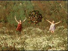 """Daisies"" (""Sedmikrásky"", 1966) [dir. Věra Chytilová]  VideoDVD 753443 (Media Commons)  PN1997 .S4358 2001 DVD (SMC)  http://go.utlib.ca/cat/6559022  VideoDVD 758234 (Media Commons)  http://go.utlib.ca/cat/8350594"