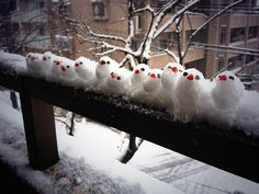 A line of snowsparrows, too cute!!