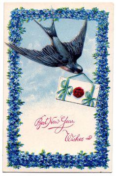 bluebird wishes