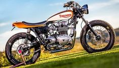 """T-Race 1200"" Triumph Thruxton R - Städler Motos - Pipeburn.com Indian Motorcycles, Triumph Motorcycles, Vintage Motorcycles, Custom Motorcycles, Custom Bikes, Triumph Motorbikes, Moto Street Tracker, Tracker Motorcycle, Motorcycle Shop"