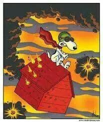 140 Best Snoopy And The Red Barron Images Peanuts Comics Peanuts