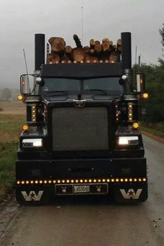 Western Star log hauler