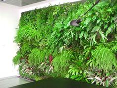 Realizzazione verde verticale - Milano (MI)