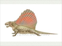 Welcome to Keiji Terakoshi's Illustrations Gallery DOFU-AN. To see an enlarged image, please point or press on the illustration. If you are lucky, you will find special displays, too! Prehistoric Wildlife, Prehistoric Creatures, Jurassic World, Jurassic Park, The Lost World, Crocodiles, Natural History, Reptiles, Illustration