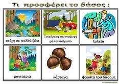 Forest Theme, Trees To Plant, Activities For Kids, Safari, Kindergarten, Education, Comics, School, Blog