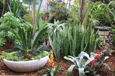 2016 Entry - Spring Garden Competition