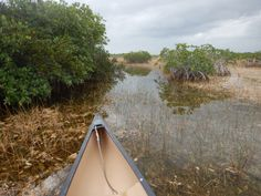 Kanotrip in de Everglades - Globetrotter Avenue Outdoor Gear, Tent, Florida, Tours, Store, Tents