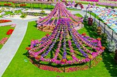 the Miracle Garden In Dubai   Flowers, Garden, Contains, Allowed, Miracle