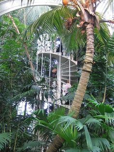 The World's Largest Collection of Living Plants | Amazing Snapz | See more Pictures