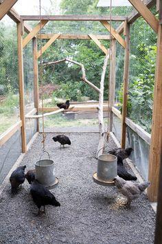 Cute Chicken Coops, Chicken Coop Run, Chicken Pen, Chicken Coup, Chicken Garden, Chicken Life, Chicken Coop Designs, Simple Chicken Coop, Moveable Chicken Coop