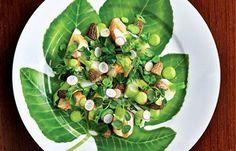 Rabbit with Tarragon Recipe - Great British Chefs