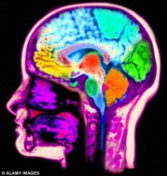 fMRI shows that thought patterns used to recall the past and imagine the future are strikingly similar
