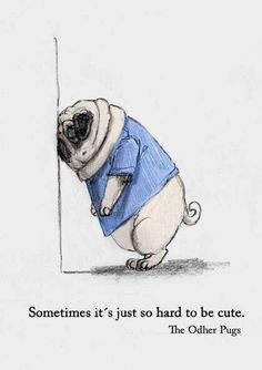 Pinned With LOve To Pug A Pug