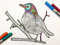 Curious Robin PDF Zentangle Coloring Page by DJPenscript on Etsy