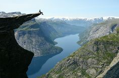 sitting on the edge of trolltunga, norway by tomas havel   Even though the view has to be extrodinary, I just couldn't do it.