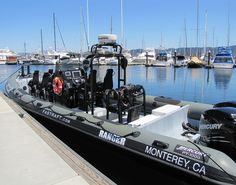 Fast Raft Boat Tours on Monterey Bay