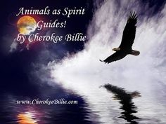 Can an animal also be a Spirit Guide? And what's the difference between a totem animal and an animal that comes as a Spirit Guide? Native American Animals, Native American Images, Native American Wisdom, Native American Indians, Cherokee Indians, Animal Spirit Guides, Spirit Animal, My Fantasy World, Fantasy Art