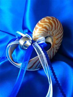 Destination Beach Wedding Nautilus Shell Ring Bearer Pillow Alternative in Royal Blue & White (or Custom) by JsWorldOfWonder, via Etsy.