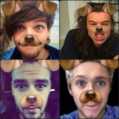 The One Direction Puppies<<they all are so adorable I can't