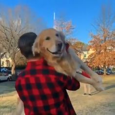 How to play catch with your dog – Lidia Gruen - Baby Animals Funny Animal Videos, Cute Funny Animals, Animal Memes, Cute Baby Animals, Funny Dogs, Animals And Pets, Amazing Animals, Animals Beautiful, Cute Puppies