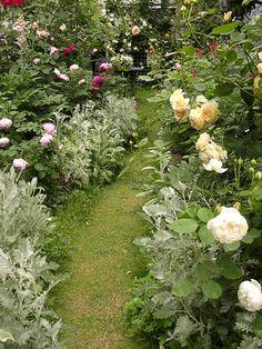 White flower garden! Yes!