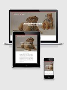 Diseño para  Veterinarios / Peluquerías caninas etc  http://peludo.belomar.es/