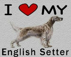 I Love My English Setter Cutting Board - Great For Kitchens by MyHeritageWear. $34.95. Save 22%!