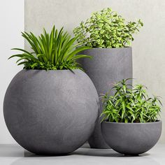 This website is sharing free sketchup resources such as models , interior scenes , exterior scenes and textures for all sketchup users. Outdoor Planters, Garden Planters, Outdoor Gardens, Modern Planters, Back Garden Design, Modern Garden Design, Terraced Landscaping, Outdoor Landscaping, Tall Indoor Plants