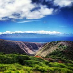 Lanai, Hawaii.... climbing this and looking out was so breathtaking