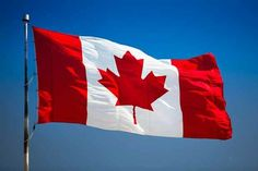 Move to Canada? It's Not That EasyDespite threats to move to Canada during each election season, the reality is more complicated than many think. Ravenclaw, Government Of Canada, Immigration Canada, Moving To Canada, Dragon City, Canada Day, Visit Canada, Toronto Canada, New Pins