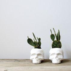 Planteur de crâne en céramique parfait pour les par mudpuppy