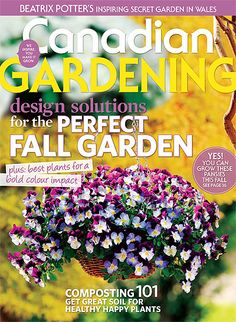 Design solutions for the perfect fall garden; Beatrix Potter's inspiring secret garden in Wales; composting best plants for a bold colour impact Composting 101, Autumn Garden, Beatrix Potter, Cool Plants, Pansies, Bold Colors, Wales, Gardening, Colour