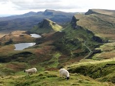 ourwildways:   The Quiraing, Isle of Skye» by QuidamCress  sheep?
