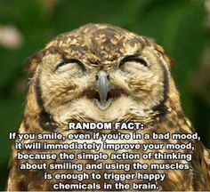 happy thoughts trigger happy chemicals in the brain. genius!