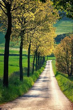 A dirt country road. Beautiful Roads, Beautiful Landscapes, Beautiful World, Beautiful Places, Landscape Photography, Nature Photography, Back Road, Nature Pictures, The Great Outdoors