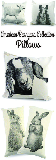 Barnyard Pillows for the Nursery.  These little charmers are screen printed by hand onto canvas and then made into pillows. These designer accent pillows are part of the American Barnyard collection.