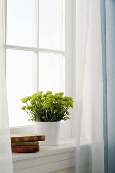 Unique window sill how to exclusive on dhomedesign.com Plants On Window Sill, Window Sill Decor, Kitchen Window Sill, Sick Building Syndrome, Little Plants, Bright Flowers, Indoor Air Quality, Large Windows, Small Spaces