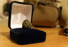 Te apetece fumar conmigo... - http://growlandia.com/highphotos/media/te-apetece-fumar-conmigo/
